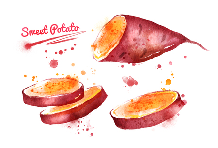 Watercolor illustration of sweet potato, half and sliced, with paint smudges and splashes.