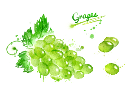 Watercolor bunch of grapes with leaves, berries and paint smudges and splashes.