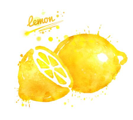 손으로 그린 레몬의 수채화 그림 스톡 콘텐츠