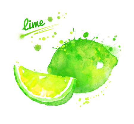 Hand drawn watercolor illustration of lime Stock Photo