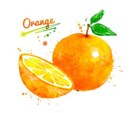 전체 수채화 및 오렌지 반