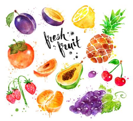 Watercolor colorful illustration set of fresh fruit