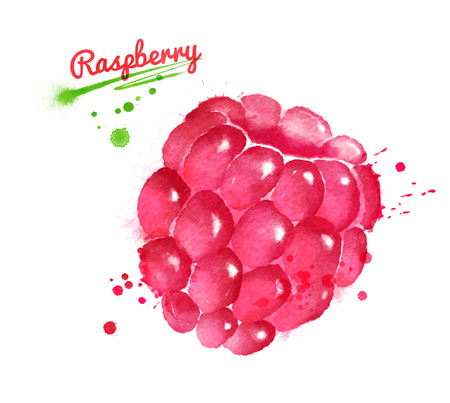 Watercolor illustration of raspberry Reklamní fotografie - 81114464