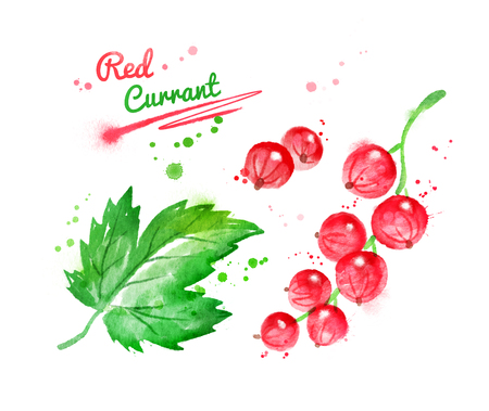 Watercolor illustration of red currant and leaf with paint smudges and splashes.