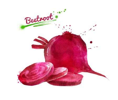Watercolor hand drawn illustration of beetroot whole and sliced with paint smudges and splashes. Stock Photo
