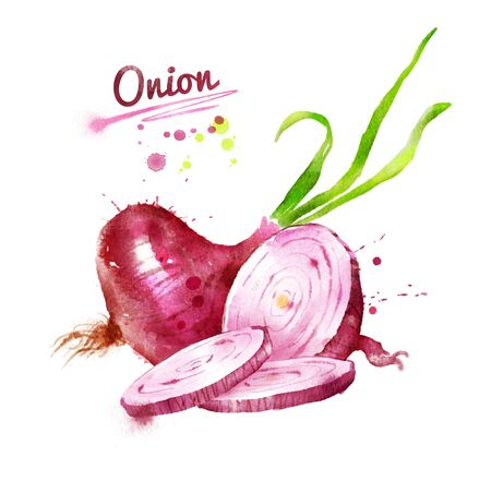 Watercolor illustration of red onion with paint smudges and splashes. Stock Photo