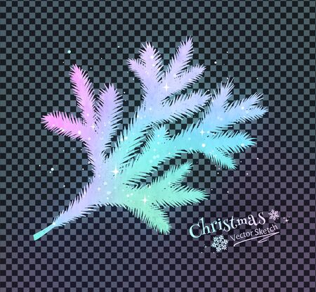 Vector illustration of Christmas spruce branch Ilustrace