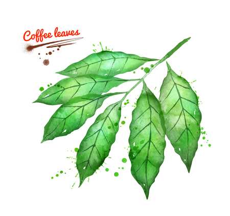 Hand drawn watercolor illustration of coffee brunch Stockfoto