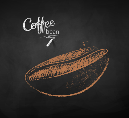 Vector chalk drawn sketch of one coffee bean on chalkboard background.