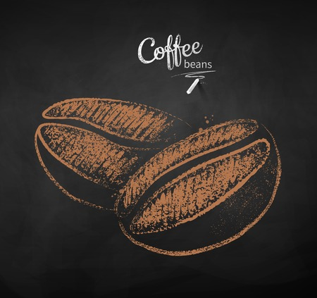 Vector chalk drawn sketch of two coffee beans on chalkboard background.