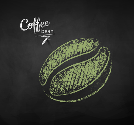 Vector chalk drawn sketch of one green coffee bean on chalkboard background.