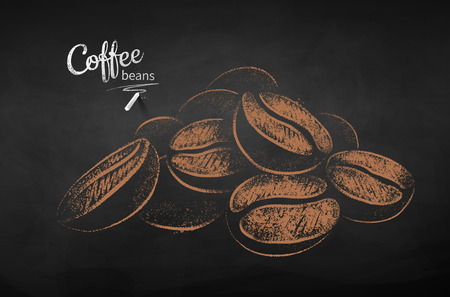 Vector chalk drawn sketch of pile of coffee beans on chalkboard background. Illustration