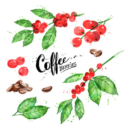 Watercolor illustration set of coffee beans and berries