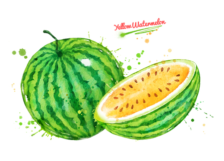 Watercolor illustration of whole and half of yellow watermelon with paint splashes. Banco de Imagens