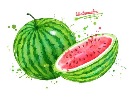 Watercolor illustration of watermelon