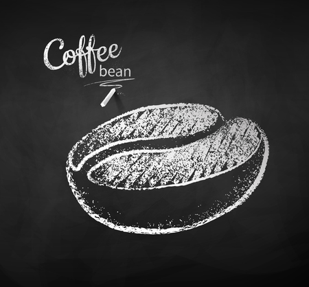 Black and white vector chalk drawn sketch of one coffee bean on chalkboard background.