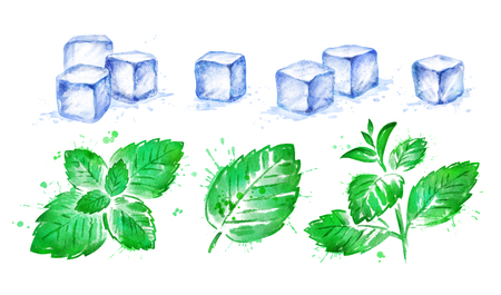 Watercolor illustration of Mint leaves and Ice Cubes
