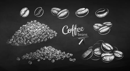 Black and white vector chalk drawn sketches set of coffee beans on chalkboard background.
