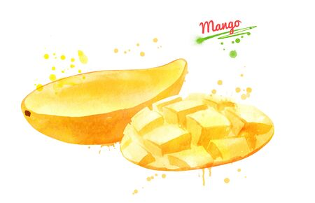 Watercolor illustration of yellow mango Banque d'images - 134863412