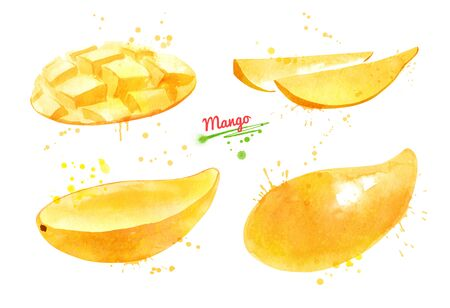 Watercolor set of illustrations of yellow Mango fruit Banque d'images - 134863413
