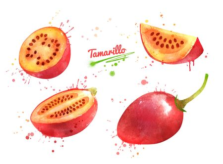 Illustration of whole and sliced Tamarillo fruit Banque d'images - 134863417