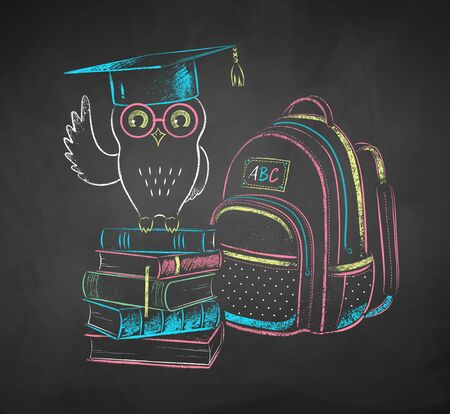 Chalk drawn illustration of owl on books 写真素材
