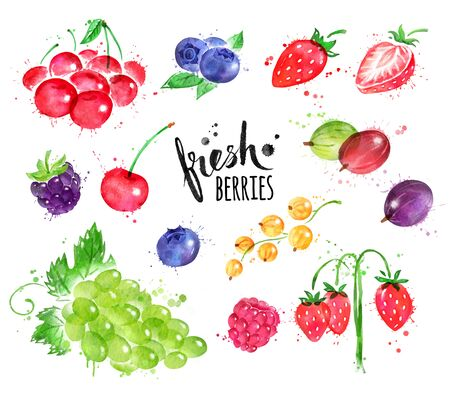 Hand painted watercolor illustration collection of berries with paint splashes.