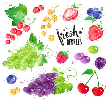 Hand painted watercolor illustration set of berries with paint splashes.