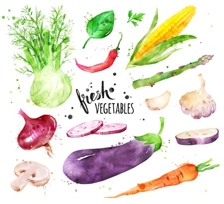 Watercolor hand drawn illustration collection of fresh vegetables whole and sliced with paint smudges and splashes. Stockfoto