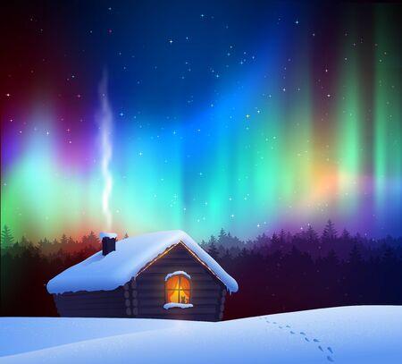 Vector illustration of winter night landscape