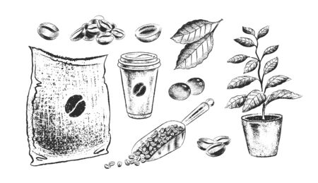 Black and white illustrationsof coffee items