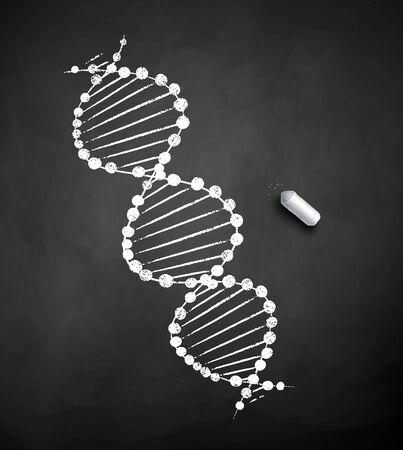 Chalk drawn illustration of DNA structure Ilustração