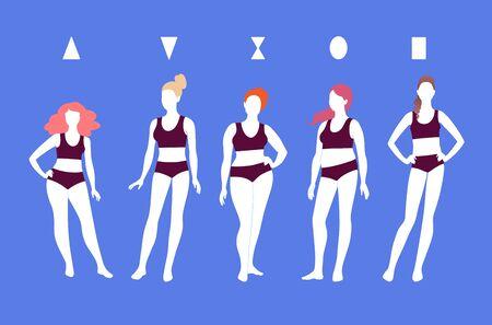 Vector illustrations of female body types Ilustracje wektorowe