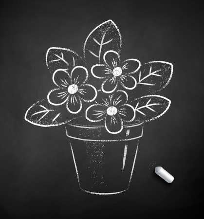 Chalk drawn illustration of flower in pot Ilustração