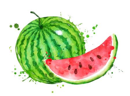 Watercolor vector illustration of watermelon