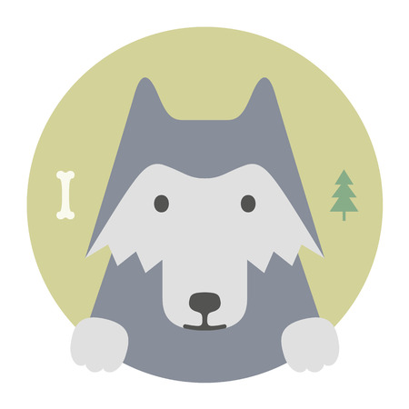 lobo: Conjunto del animal. Retrato en gr�ficos planos. Lobo gris Vectores