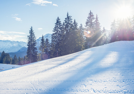 ski resort: Mountain skiing slope in Garmisch-Partenkirchen resort in Bavarian Alps, Germany, in the day sunshine with fir-trees and mountain peaks at the backdrop on a clear winter day Stock Photo