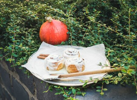white backing: Cinnamon pumpkin rolls with creamy cheese icing and a round pumpkin over a piece of white backing paper with the green bush background Stock Photo