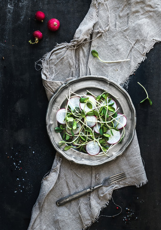 sprout: Spring salad with sunflower sprouts and radish in vintage metal plate over rustic dark painted background, top view Stock Photo