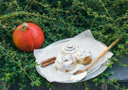 white backing: Cinnamon pumpkin buns with creamy cheese icing and ripe round pumpkin over a piece of white backing paper with the green bush background