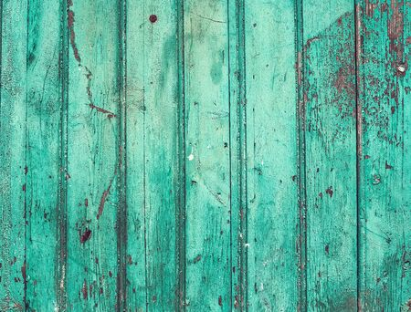 crannied: Old rustic painted cracky green (turqouise) wooden texture or background