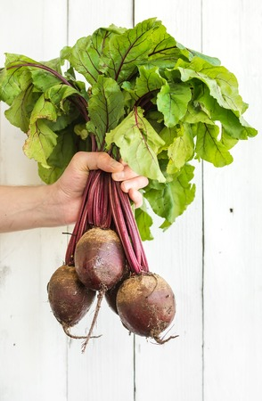 kept: Bunch of fresh garden beetroot kept in mans hand, white wooden backdrop, copy space