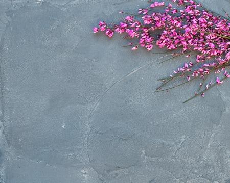 Púrpura resorte flor rama del árbol sobre un fondo gris piedra concreta, vista desde arriba, copia espacio Foto de archivo - 52332711