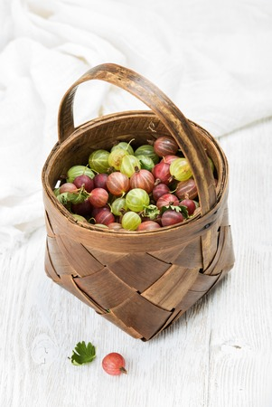 Birchbark basket full of ripe green and red gooseberries over white background, selective focus, vertical composition