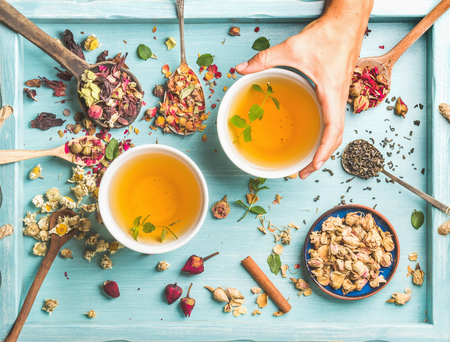 Two cups of healthy herbal tea with mint, cinnamon, dried rose and camomile flowers in different spoons and womans hand holding one cup over blue wooden background, top view Stock Photo