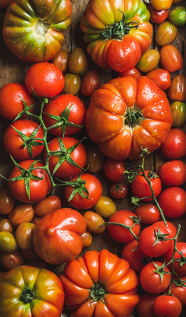 hotbed: Colorful tomatoes of different sizes and kinds, top view, vertical