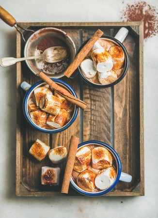 Hot chocolate in enamel mugs with cinnamon and roasted marshmallows in wooden tray, top view, selective focus, copy space, vertical composition