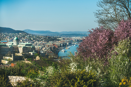 View over Buda side of Budapest with Buda castle and Danube river and blooming trees from viewpoint on Gellert hill on sunny spring day Stock Photo