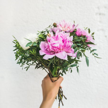 Bouquet of pink and white peony flowers in womans hand, white wall background, copy space, square crop. Flower greeting card concept