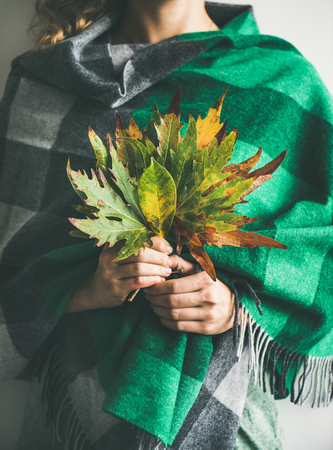 Woman in warm woolen green check scarf or blanket with Autumn fallen leaves in her hands. Fall cosy mood lifestyle concept Stock Photo